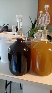 Hibiscus mead, two different plain honey meads.